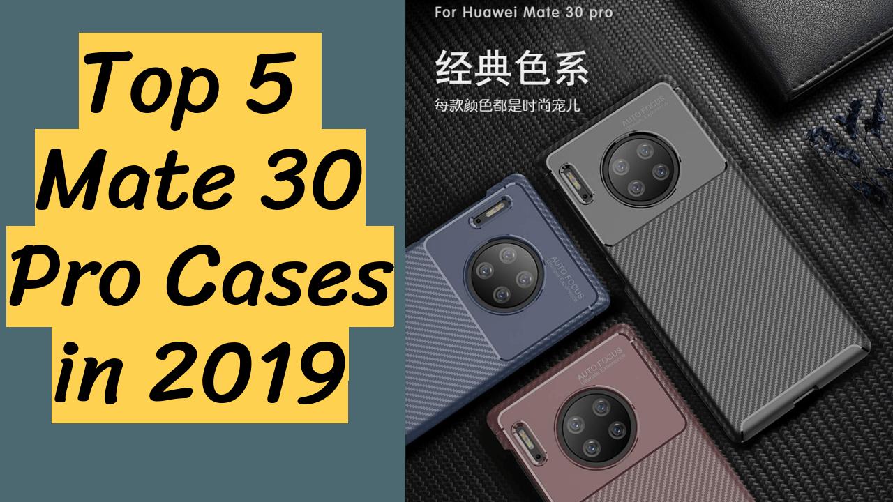 Mate 30 Pro Cases